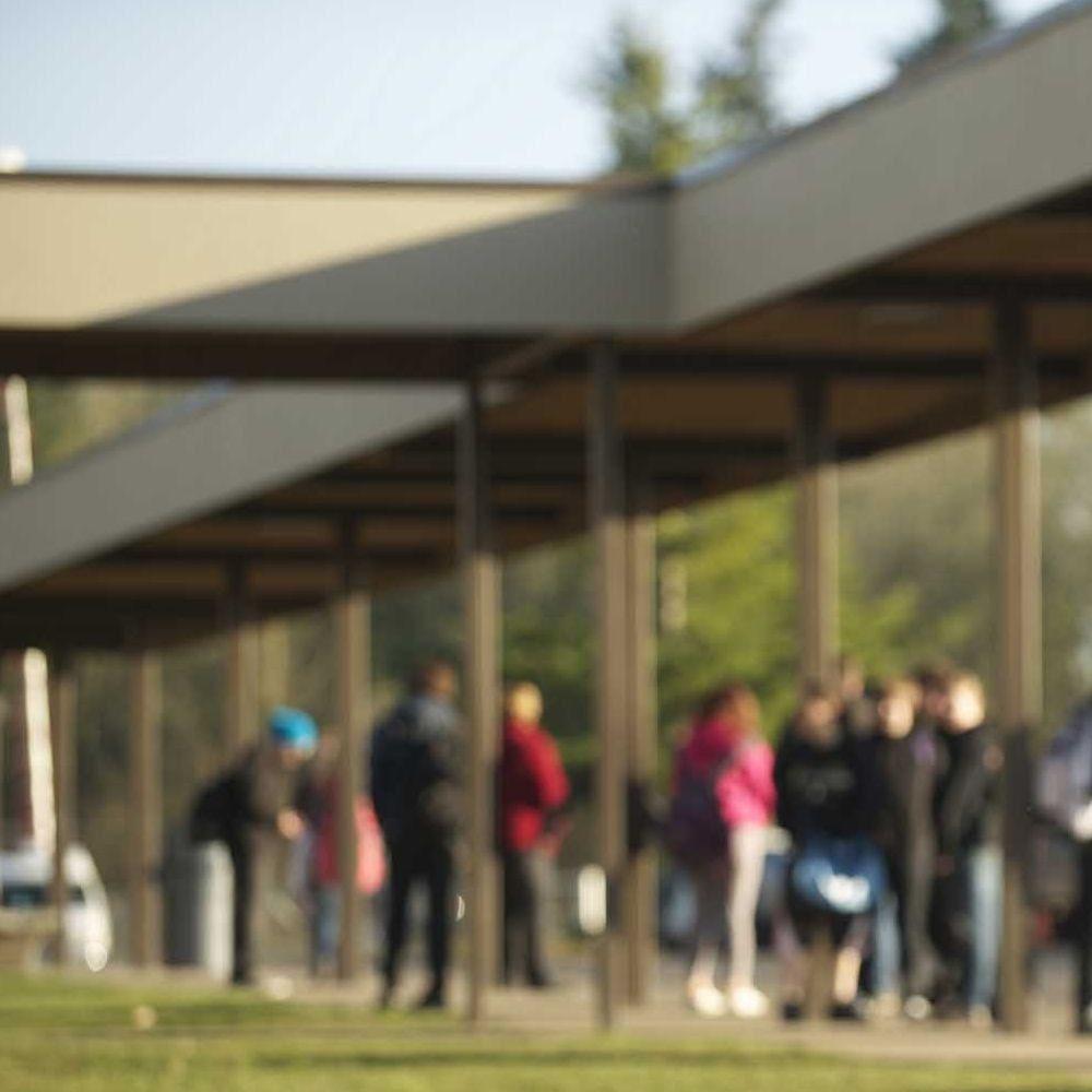 Новые меры для повышения уровня безопасности в школах острова