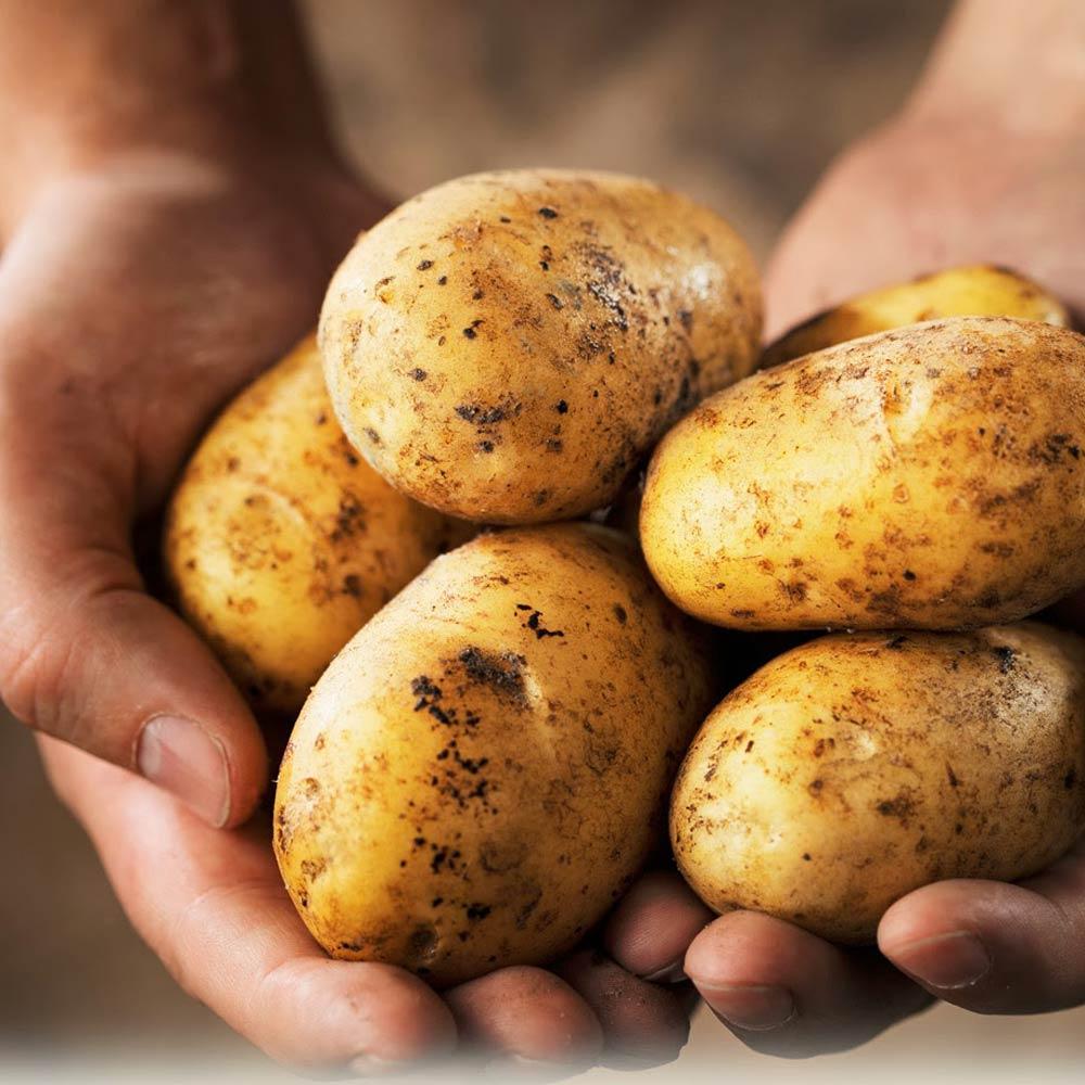 На Кипре – «картофельный» кризис