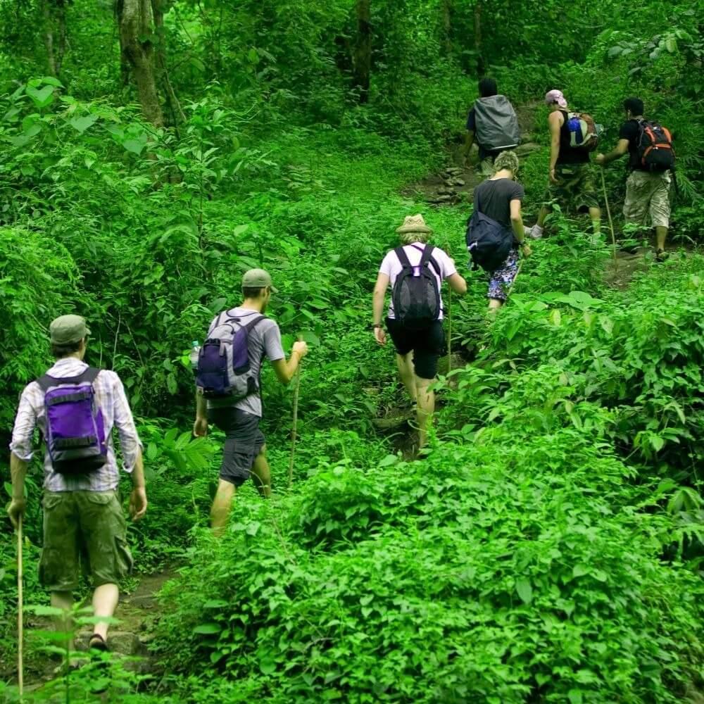 В кипрском лесу нашлись 26 немецких туристов с гидом