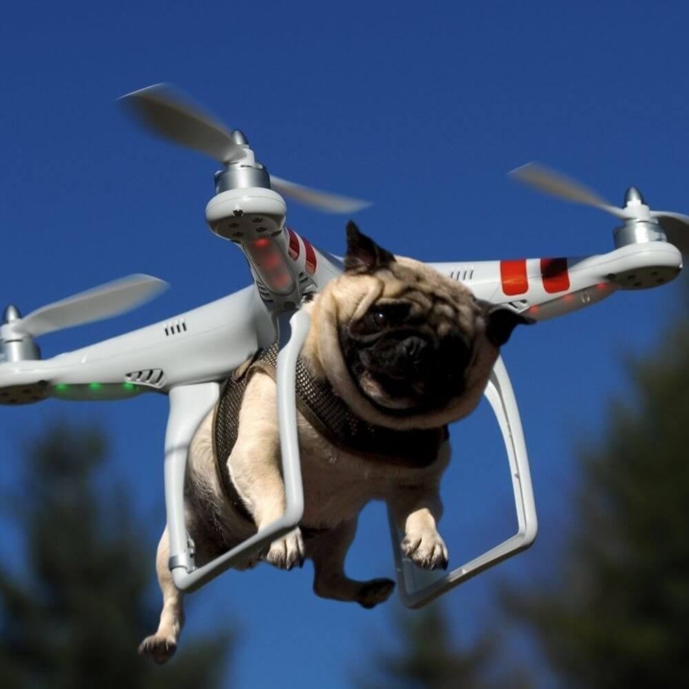 Почту на Кипре будут доставлять… дроны
