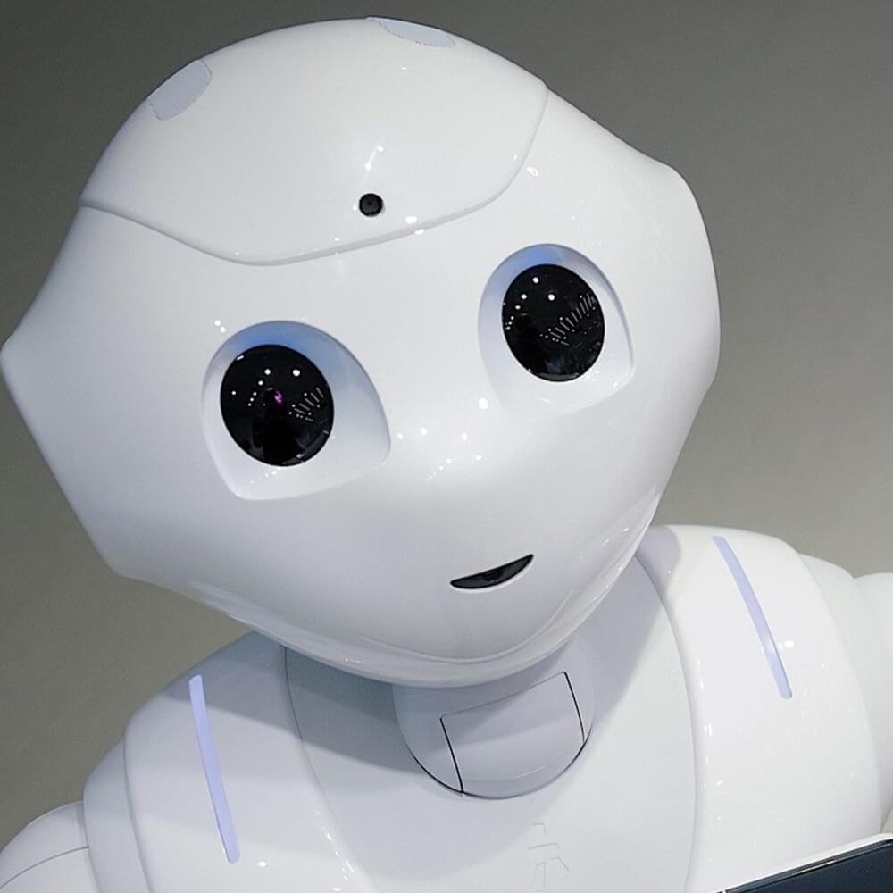 Война роботов – начало!