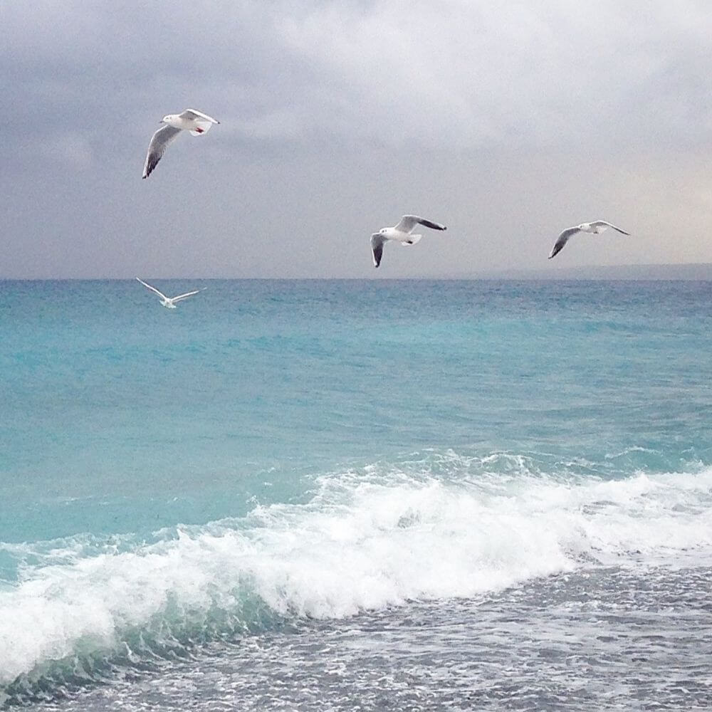 Синоптики прогнозируют потепление с ливнями на побережьях и снегопадами в горах