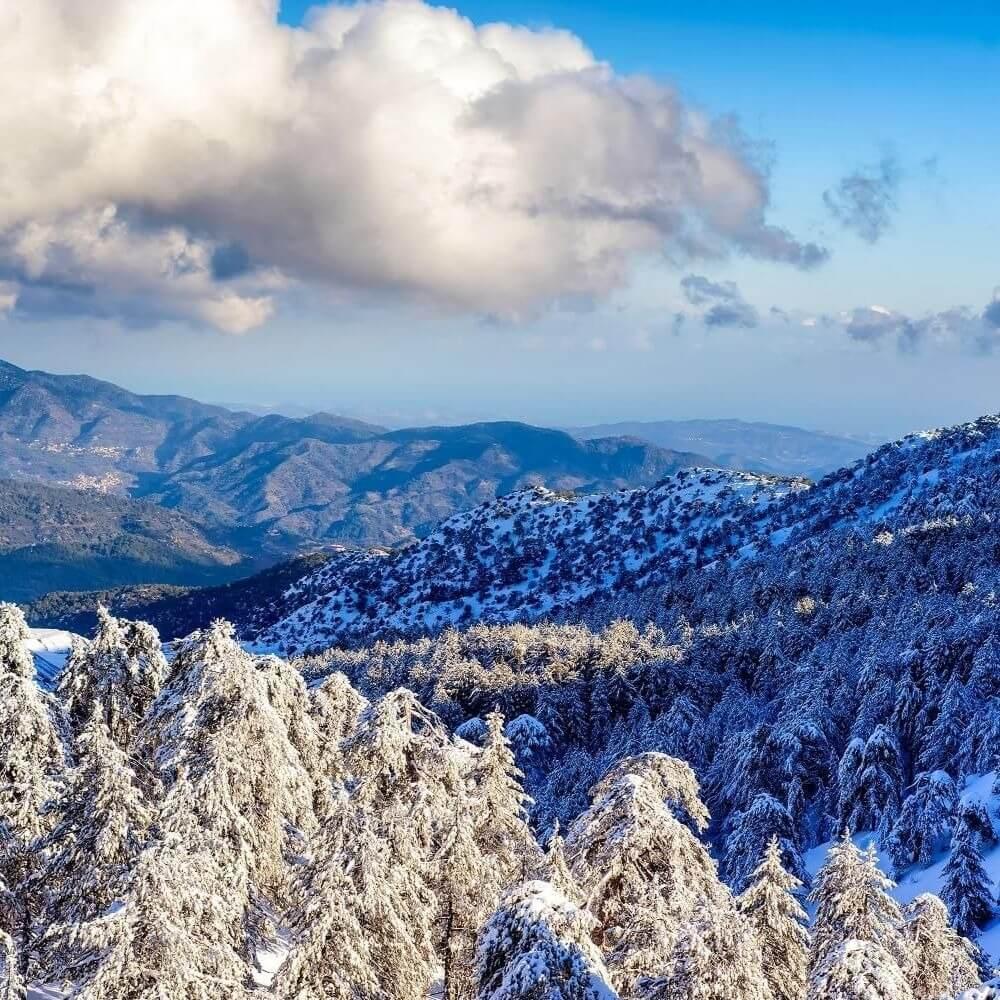 Непогода на Кипре: школы в горах закрыты, люди остались без света